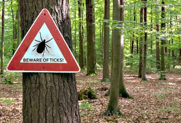 beware of ticks sign in wooded area