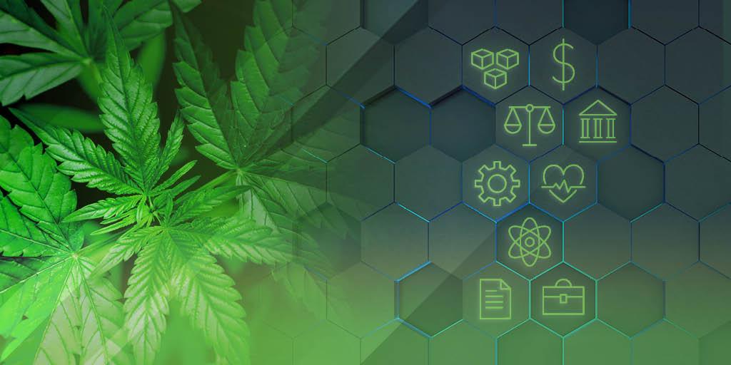 graduate certificate in cannabis control